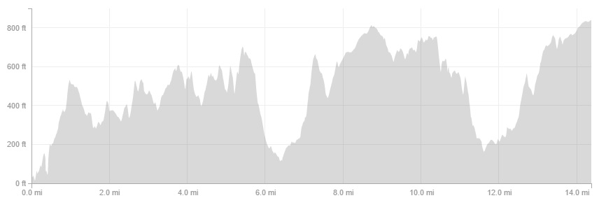Race profile. Pretty flat... not.